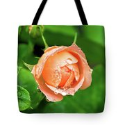 Peach Rose In The Rain Tote Bag