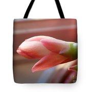 Peach Succulent Tote Bag