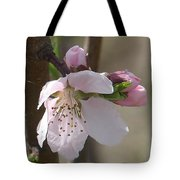 Peach Tree 3 Tote Bag