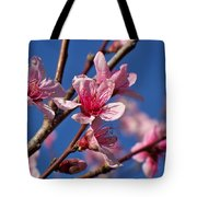 Peach Tree Blossoms Tote Bag