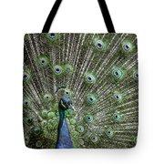 Peacock 1 Tote Bag
