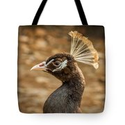 Peacock 8 Tote Bag