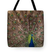 Peacock At The Fort Tote Bag