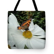 Peacock Butterfly On Cosmos Tote Bag