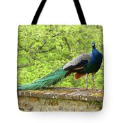 Peacock, Chateau De Saint-germain-de-livet Tote Bag