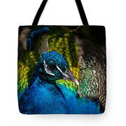 Peacock Closeup Tote Bag