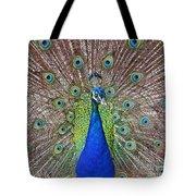 Peacock Displaying His Plumage Tote Bag