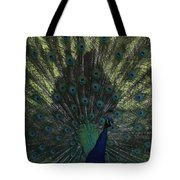 Peacock Eyes Tote Bag