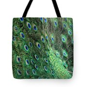Peacock Feather Pattern Tote Bag