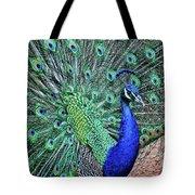 Peacock In A Oak Glen Autumn 2 Tote Bag