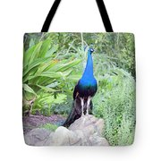 Peacock Landscape Louisiana  Tote Bag