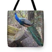 Peacock On Woodpile Tote Bag