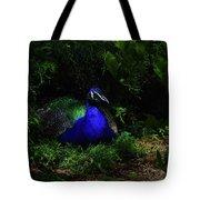 Peacock Peafowl Tote Bag