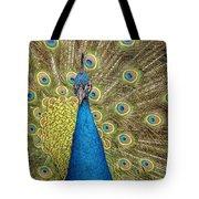 Peacock Splendor Tote Bag