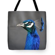 Peacock Stare Down Tote Bag