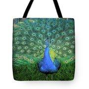 Peacock1 Tote Bag
