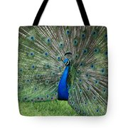 Peacocks Glory Tote Bag