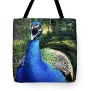 Peacocks Squawk Tote Bag