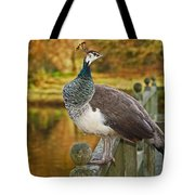 Peahen In Autumn Tote Bag
