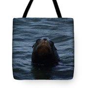 Peakaboo Tote Bag