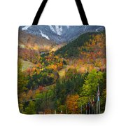 Peaked Tote Bag by Mark Papke