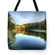 Peaks Of Otter Reflection Tote Bag