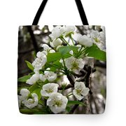 Pear Tree Blossoms 2 Tote Bag