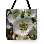 Pear Tree Blossoms 3 Tote Bag