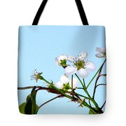 Pear Tree Blossoms 4 Tote Bag