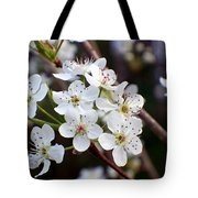 Pear Tree Blossoms II Tote Bag