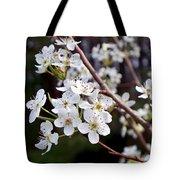 Pear Tree Blossoms IIi Tote Bag