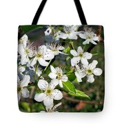Pear Tree Blossoms Iv Tote Bag