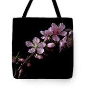Peach Tree Blossum Tote Bag