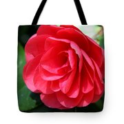 Pearl Of Beauty - Red Camellia Tote Bag