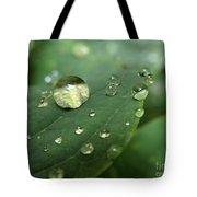 Pearls On Leaf 5 Tote Bag