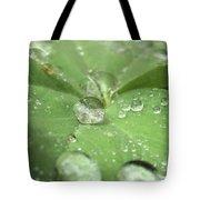 Pearls On Leaf Tote Bag