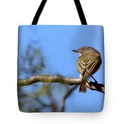 Pearly-vented Tody-tyrant Tote Bag