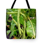 Peas Growing On The Farm 4 Tote Bag