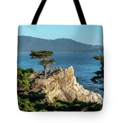 Pebble Beach Iconic Tree With Sun Light At Dusk Tote Bag