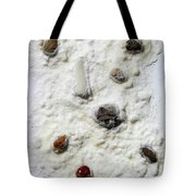 Pebbles In Snow Tote Bag by Augusta Stylianou