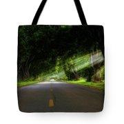 Pecan Alley Rays - Arkansas - Landscape Tote Bag