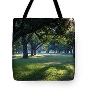 Pecan Grove Sunrise Tote Bag
