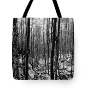 Pecos Wilderness Tote Bag