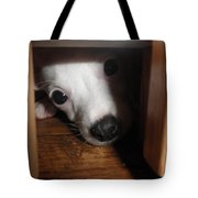 Peek A Boo Tote Bag by Camille Reichardt