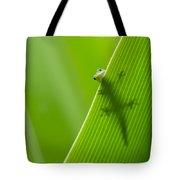Peek A Boo Gecko Tote Bag