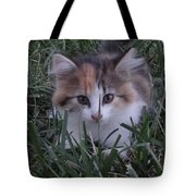 Peek A Boo Kitty Tote Bag