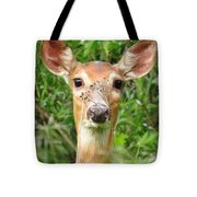 Peek A Boo  Tote Bag by Lori Frisch