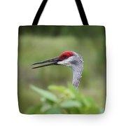Peek-a-boo Sandhill Crane Tote Bag