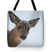 Peek A Doe Tote Bag