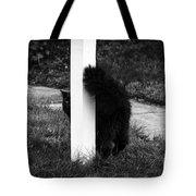 Peeking Kitty Black And White Tote Bag